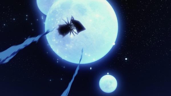 蜘蛛ですが1802